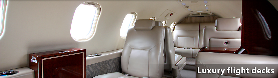 Executive flights Argentina